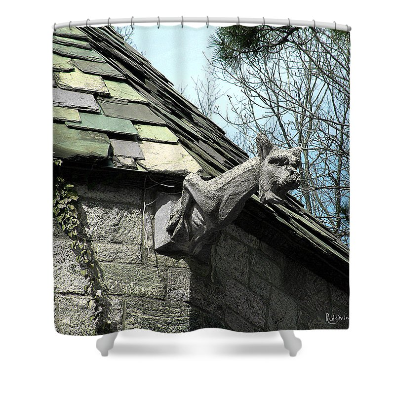 Architecture Shower Curtain featuring the photograph American Gargoyle by RC DeWinter