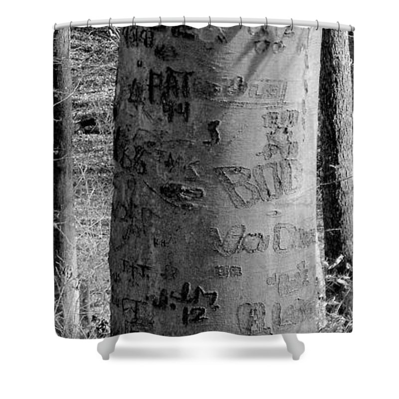 American Shower Curtain featuring the photograph American Graffiti 5 Tattoos For Trees by Ed Smith