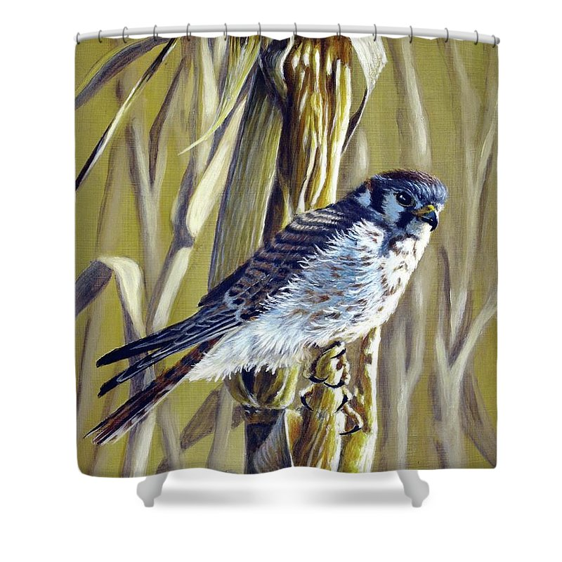Bird Of Prey Shower Curtain featuring the painting American Kestrel by Greg and Linda Halom