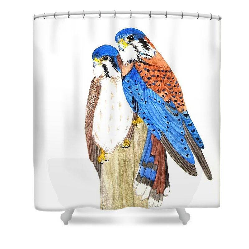 Watercolor Shower Curtain featuring the painting American Kestrels by Dee Grimm