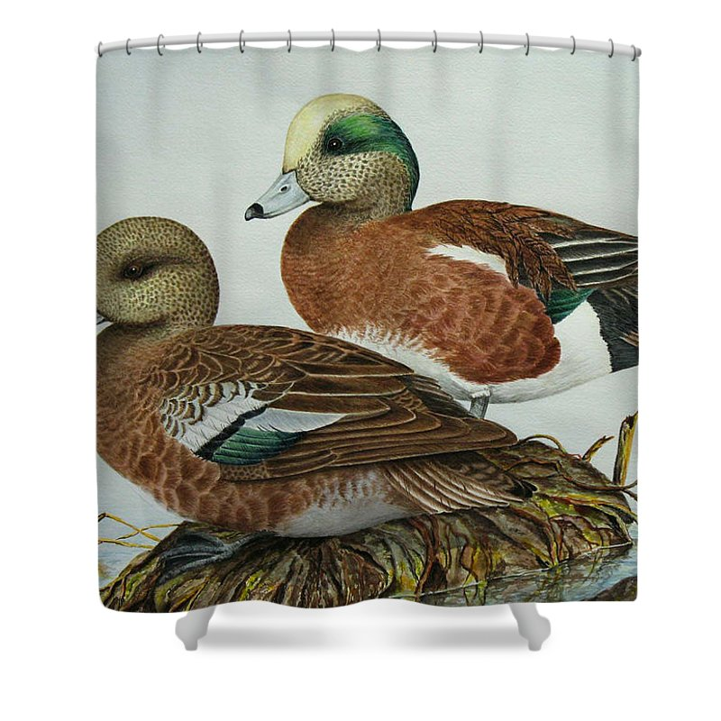 Ducks Shower Curtain featuring the painting American Widgeons by Elaine Booth-Kallweit