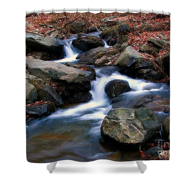 Water Shower Curtain featuring the photograph Amicalola Stream by Robert Meanor