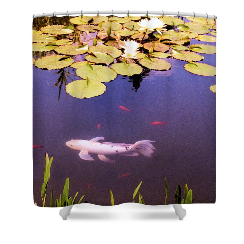 Fish Shower Curtain featuring the photograph Among The Lilies by Jan Amiss Photography