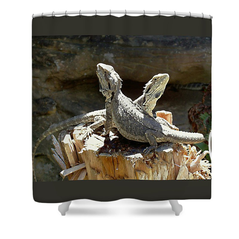 Amphion And Zethus Shower Curtain featuring the photograph Amphion And Zethus by Ellen Henneke