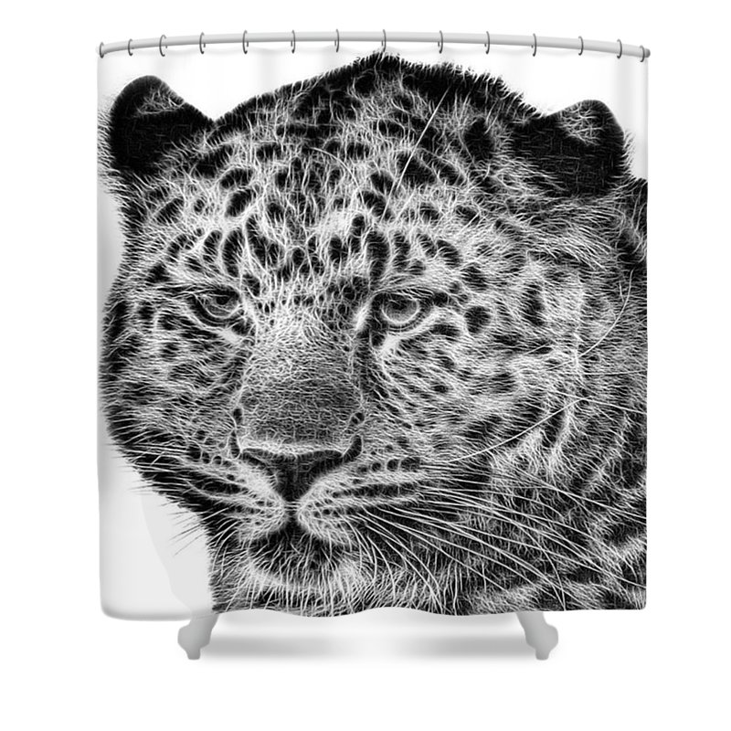 Snowleopard Shower Curtain featuring the photograph Amur Leopard by John Edwards