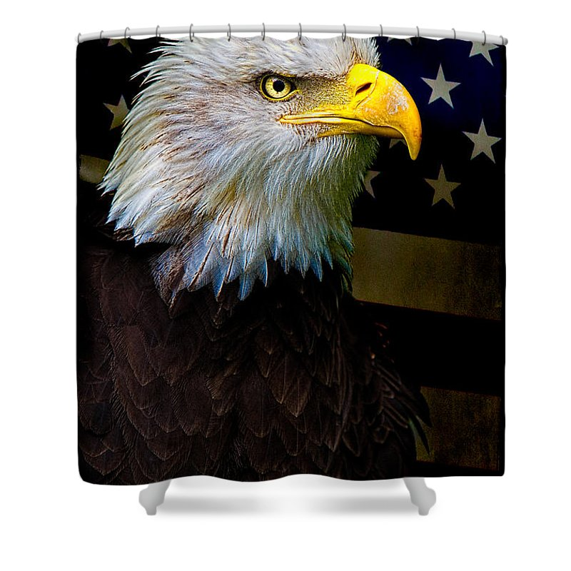 Eagle Shower Curtain featuring the photograph An American Icon by Chris Lord