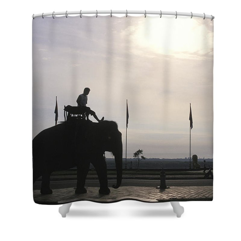 Royal Palace Shower Curtain featuring the photograph An Elephant At The Royal Palace by Richard Nowitz