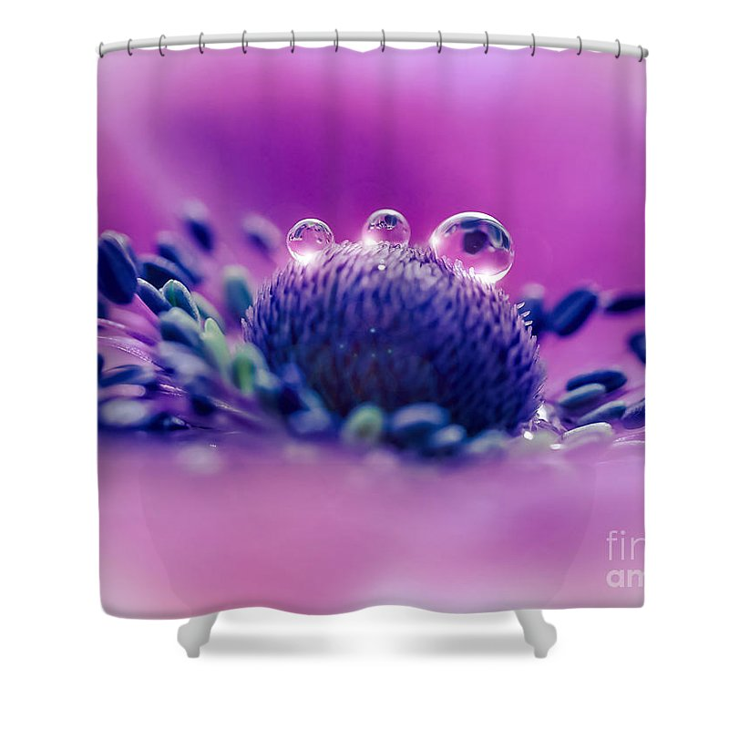 Anemone Shower Curtain featuring the photograph Anemone 05-1 by Wei-San Ooi