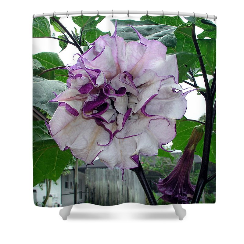 Angel Shower Curtain featuring the photograph Angel by Allan Hughes