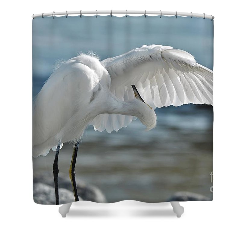 Snowy Egret Shower Curtain featuring the photograph Angel Wings by Julie Adair