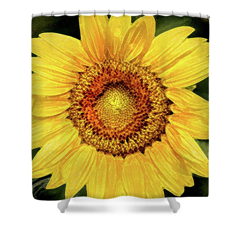 Sunflower Shower Curtain featuring the photograph Another Artistic Sunflower by Don Johnson