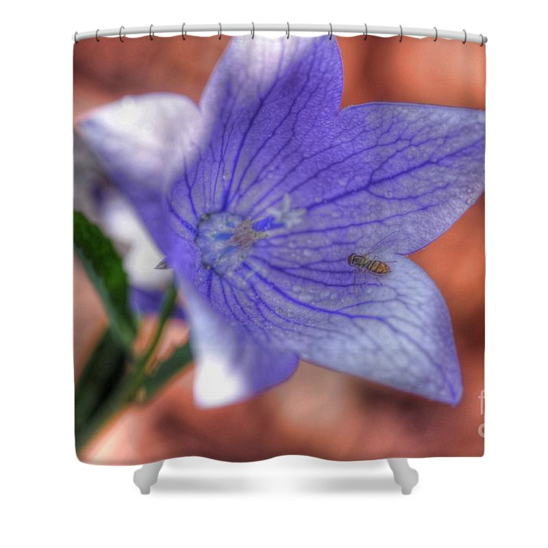Chris Fleming Shower Curtain featuring the photograph Another Bee by Chris Fleming