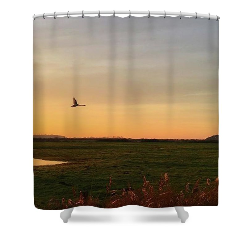 Natureonly Shower Curtain featuring the photograph Another Iphone Shot Of The Swan Flying by John Edwards
