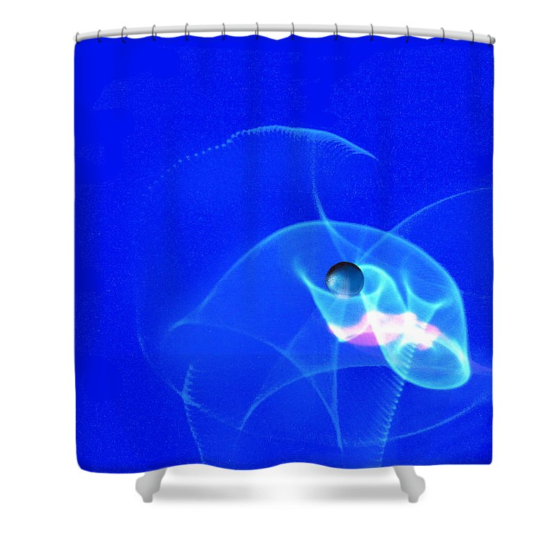 Abstract Shower Curtain featuring the photograph Apparition Pearl by Steve Karol