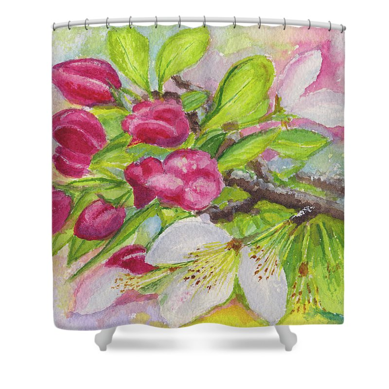 Blossoms Shower Curtain featuring the painting Apple Blossom Buds On A Greeting Card by Dai Wynn