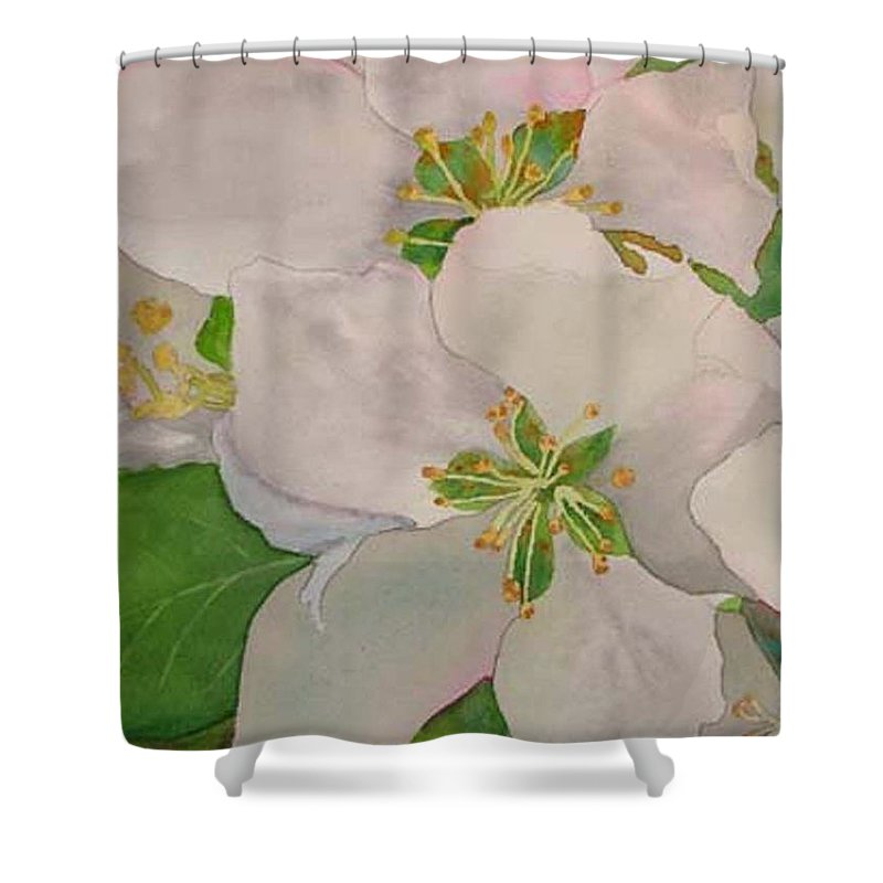 Apple Blossoms Shower Curtain featuring the painting Apple Blossoms by Sharon E Allen
