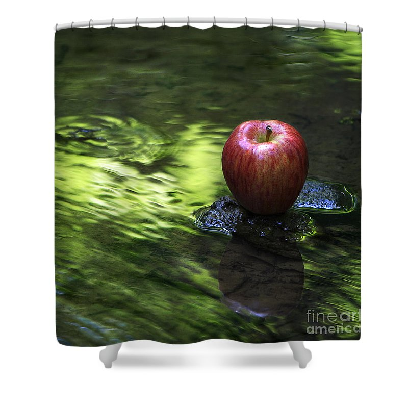 Apple Shower Curtain featuring the photograph Apple by Sari Sauls