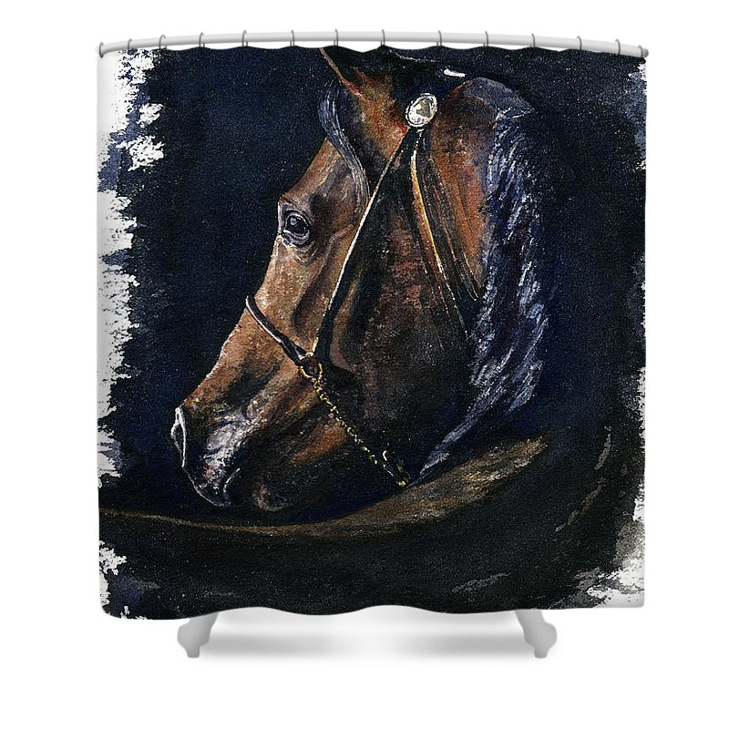 Horse Shower Curtain featuring the painting Arabian by John D Benson
