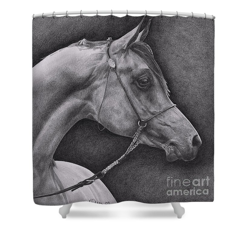 Horse Shower Curtain featuring the drawing Arabian by Karen Townsend