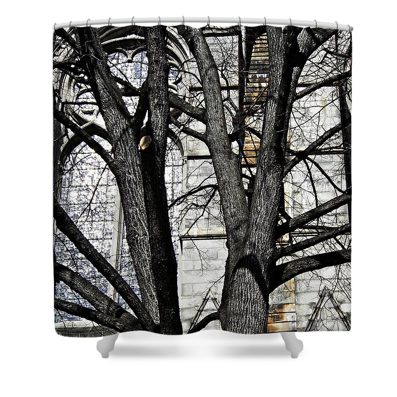 Church Shower Curtain featuring the photograph Architecture by Sarah Loft
