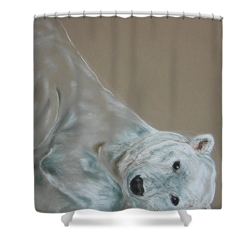 Polar Bear Shower Curtain featuring the drawing Arctic Frolic by Cori Solomon