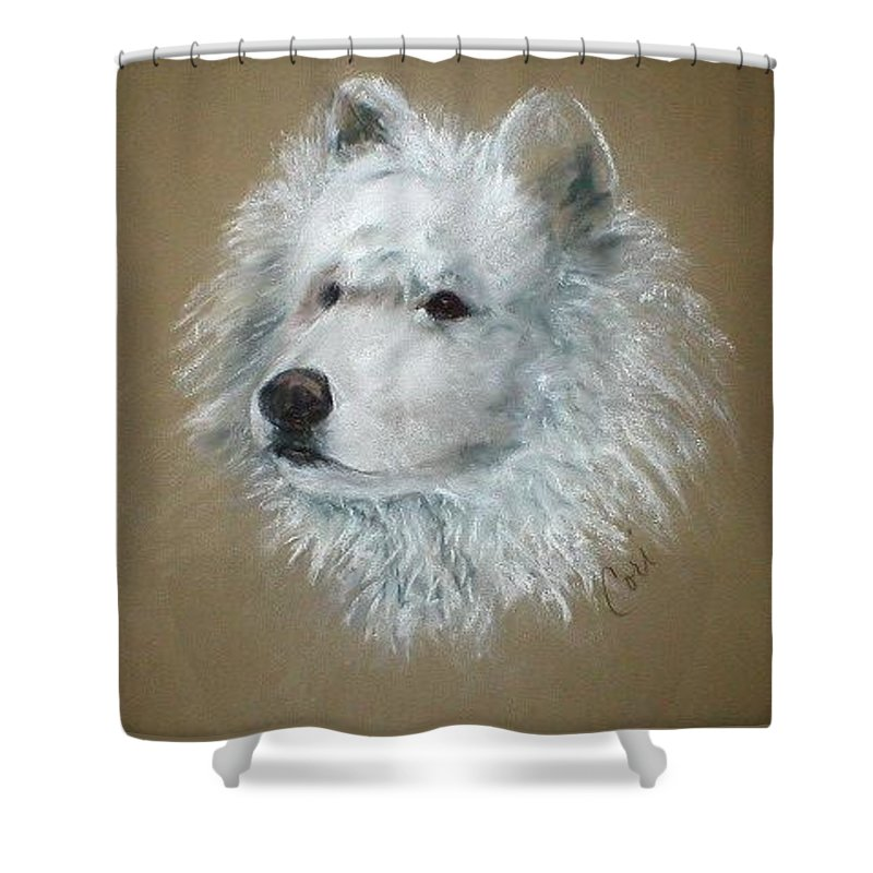 Pastel Shower Curtain featuring the drawing Arctic Majestry by Cori Solomon