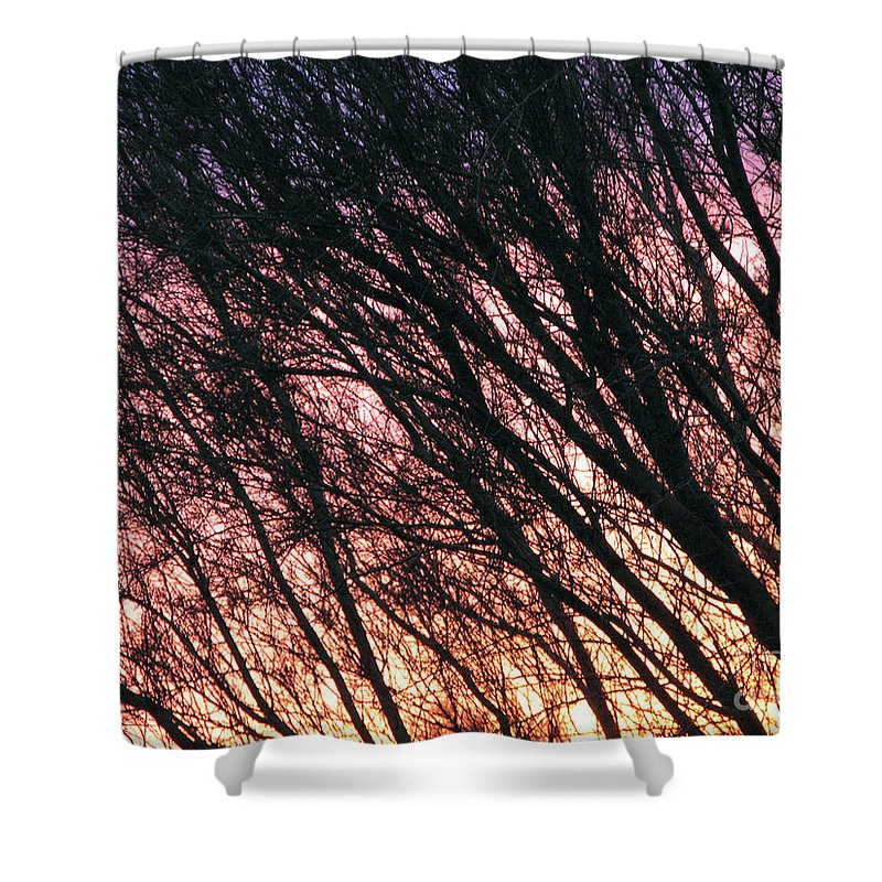 Arizona Shower Curtain featuring the photograph Arizona Sunset by Stacey May