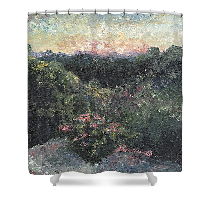Landscape Shower Curtain featuring the painting Arkansas Mountain Sunset by Nadine Rippelmeyer