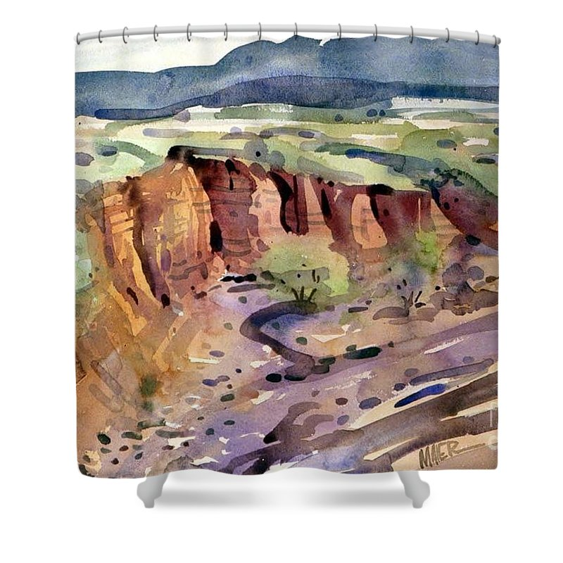 Arroyo Shower Curtain featuring the painting Arroyo by Donald Maier