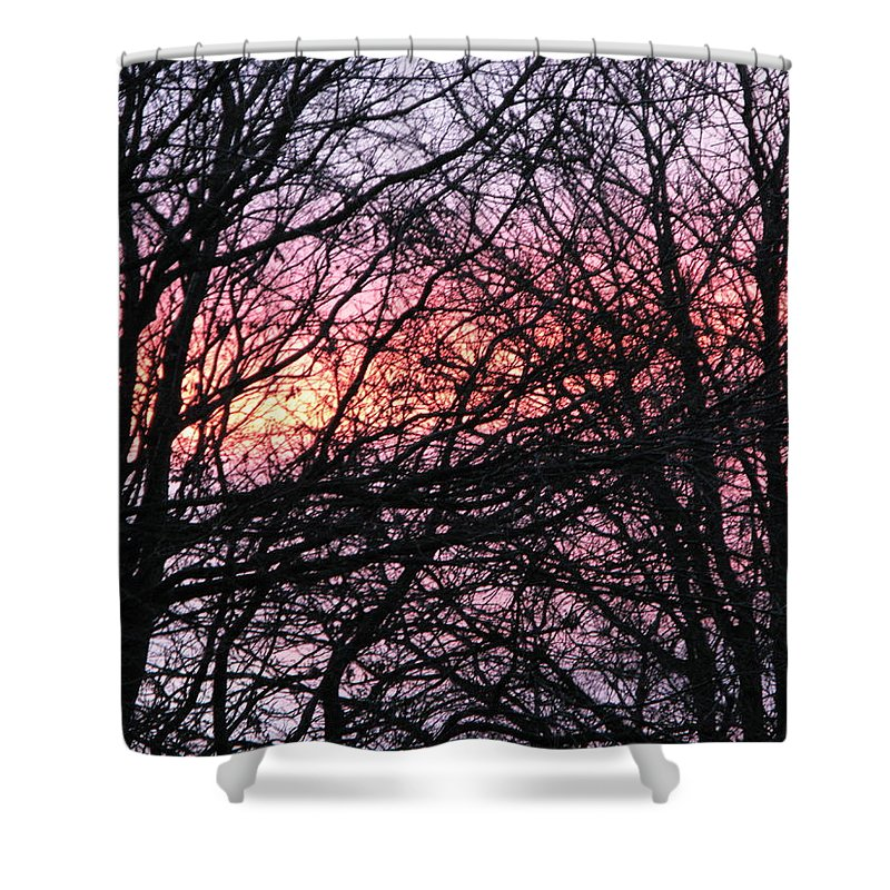 Winter Trees Shower Curtain featuring the photograph Art Inspired Nature by Maria Joy