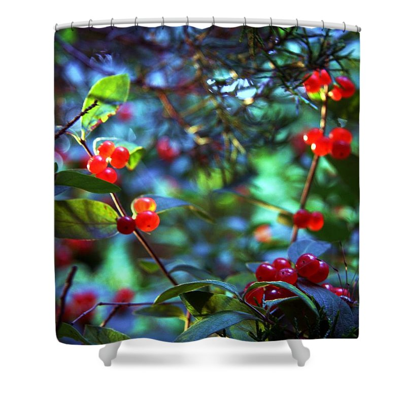 Nature Shower Curtain featuring the photograph Art by Mitch Cat