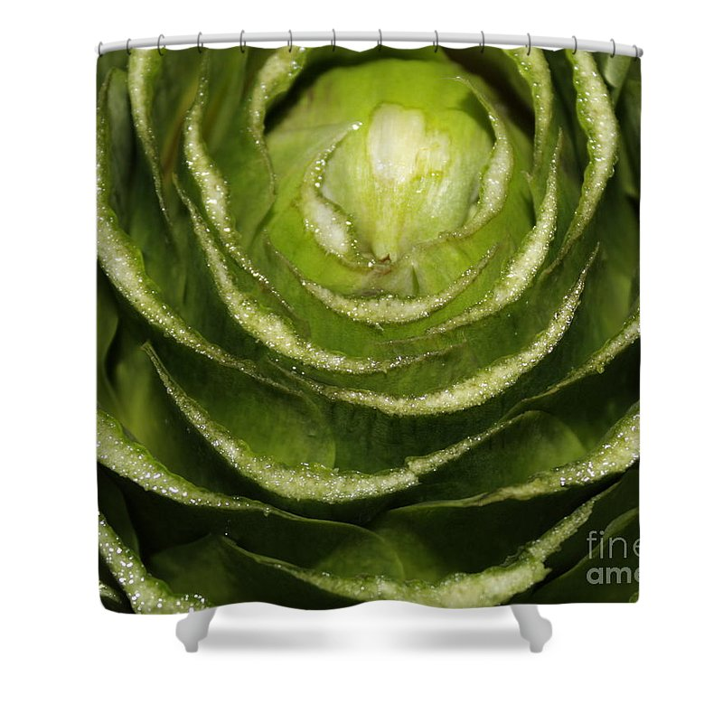 Veggies Shower Curtain featuring the photograph Artichoke Close-up by Carol Groenen