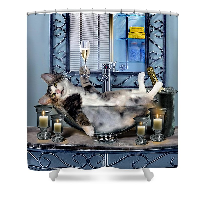 Funny Pet Print Shower Curtain Featuring The Painting With A Tipsy Kitty By