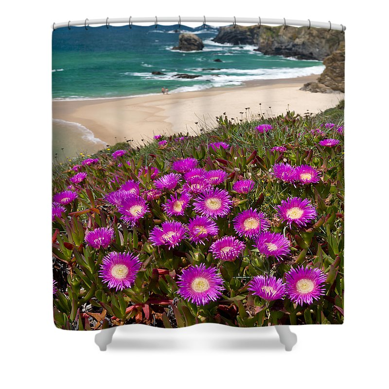 Porto Covo Shower Curtain featuring the photograph Cliff Flowers by Mikehoward Photography