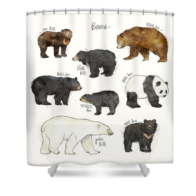 Bear Shower Curtain featuring the drawing Bears by Amy Hamilton