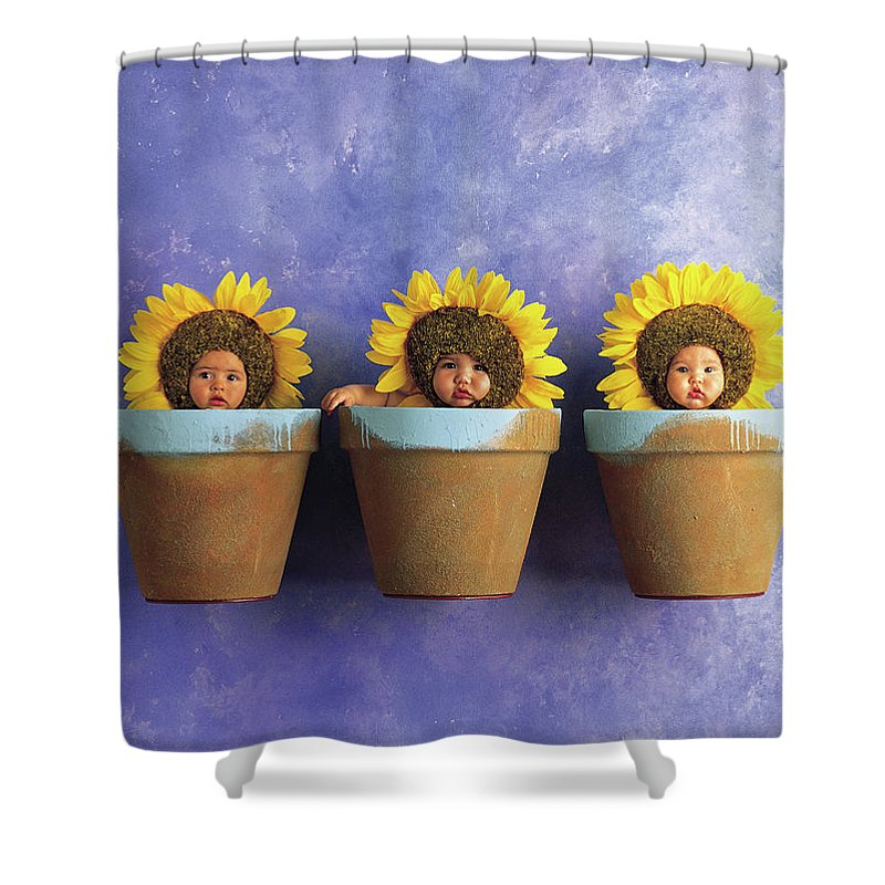 Sunflower Pots Shower Curtain For Sale By Anne Geddes
