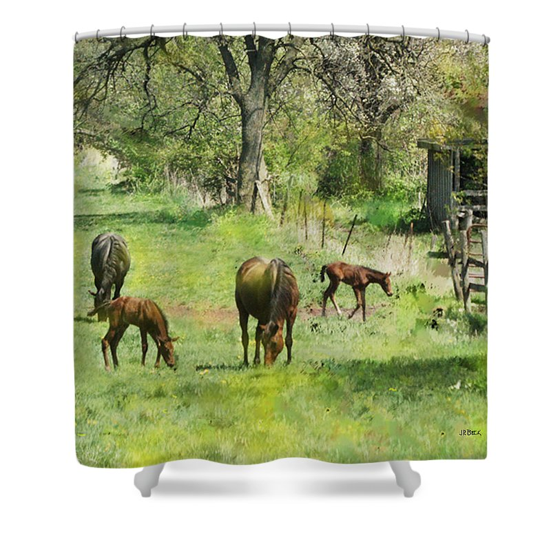 Spring Colts Shower Curtain featuring the digital art Spring Colts by John Beck
