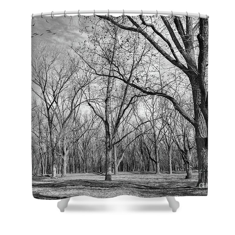 Winter Shower Curtain featuring the photograph As Winter Nears by Susan Warren