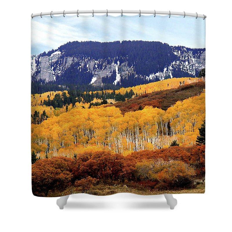 Aspens Shower Curtain featuring the photograph Aspen Vista by Linda Weyers