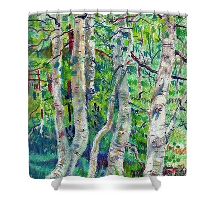Aspens Shower Curtain featuring the drawing Aspens by Donald Maier