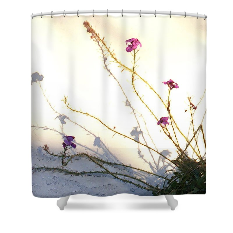 Plant Shower Curtain featuring the photograph Aspire by Linda Shafer