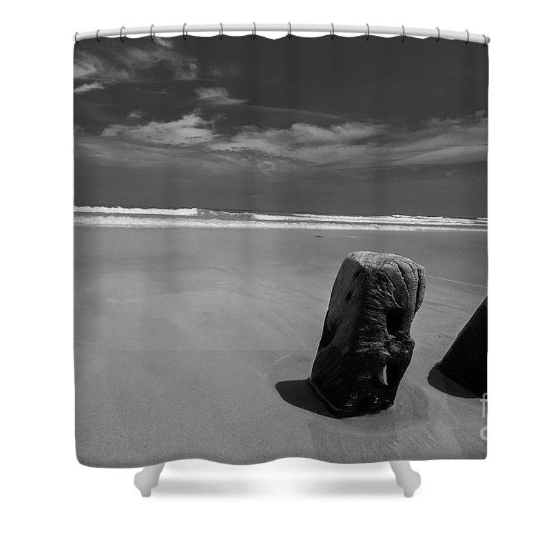 Assateague Island Shower Curtain featuring the photograph Assateague Driftwood by Jeffrey Miller