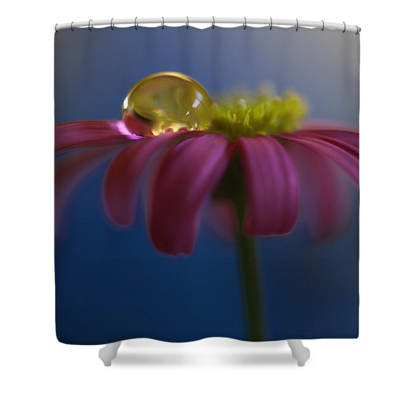 Australia Shower Curtain featuring the photograph At Ease by Kym Clarke