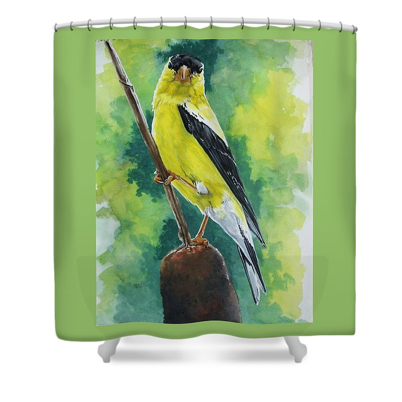 Common Bird Shower Curtain featuring the painting Aureate by Barbara Keith