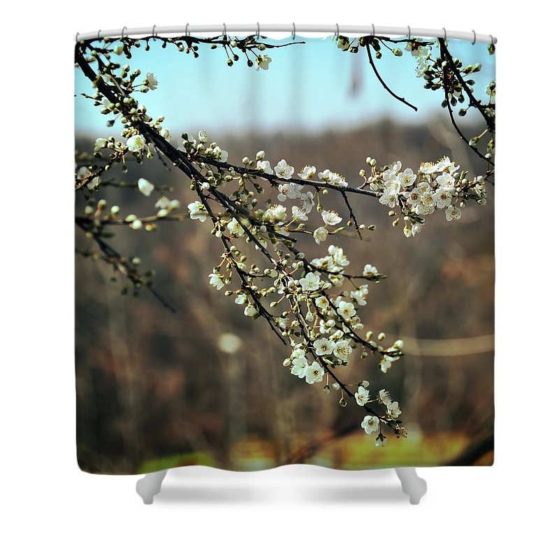 Flowers Shower Curtain featuring the photograph Autrepart by Zapista