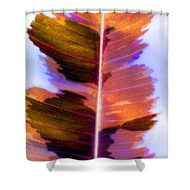 Pink Shower Curtain featuring the photograph Autumn Abstract by Carolyn Stagger Cokley