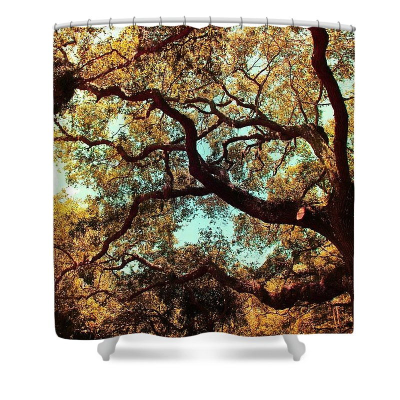 Shannon Shower Curtain featuring the photograph Autumn Bliss by Shannon Sears