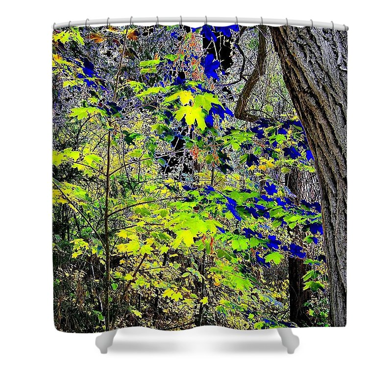 Surreal Shower Curtain featuring the photograph Autumn Blue by Will Borden
