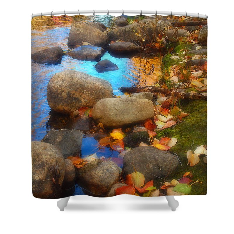 Autumn Shower Curtain featuring the photograph Autumn By The Creek by Tara Turner