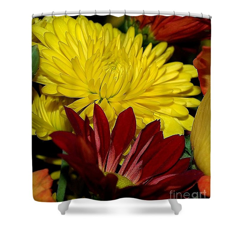 Chrysanthemum Photography Shower Curtain featuring the photograph Autumn Colors by Patricia Griffin Brett